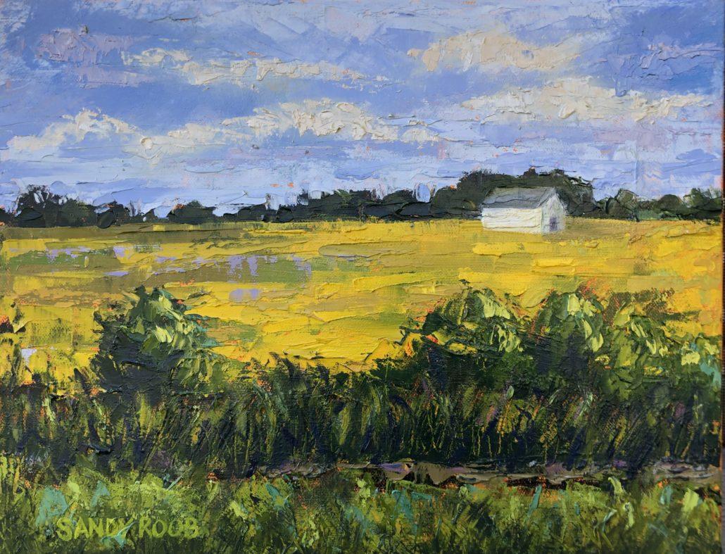 White Barn in Gold Field